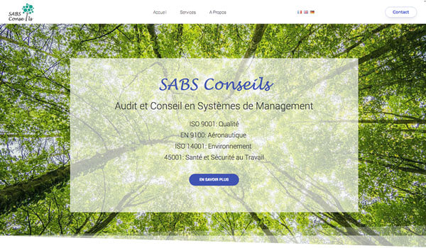 Sabs Conseils website image